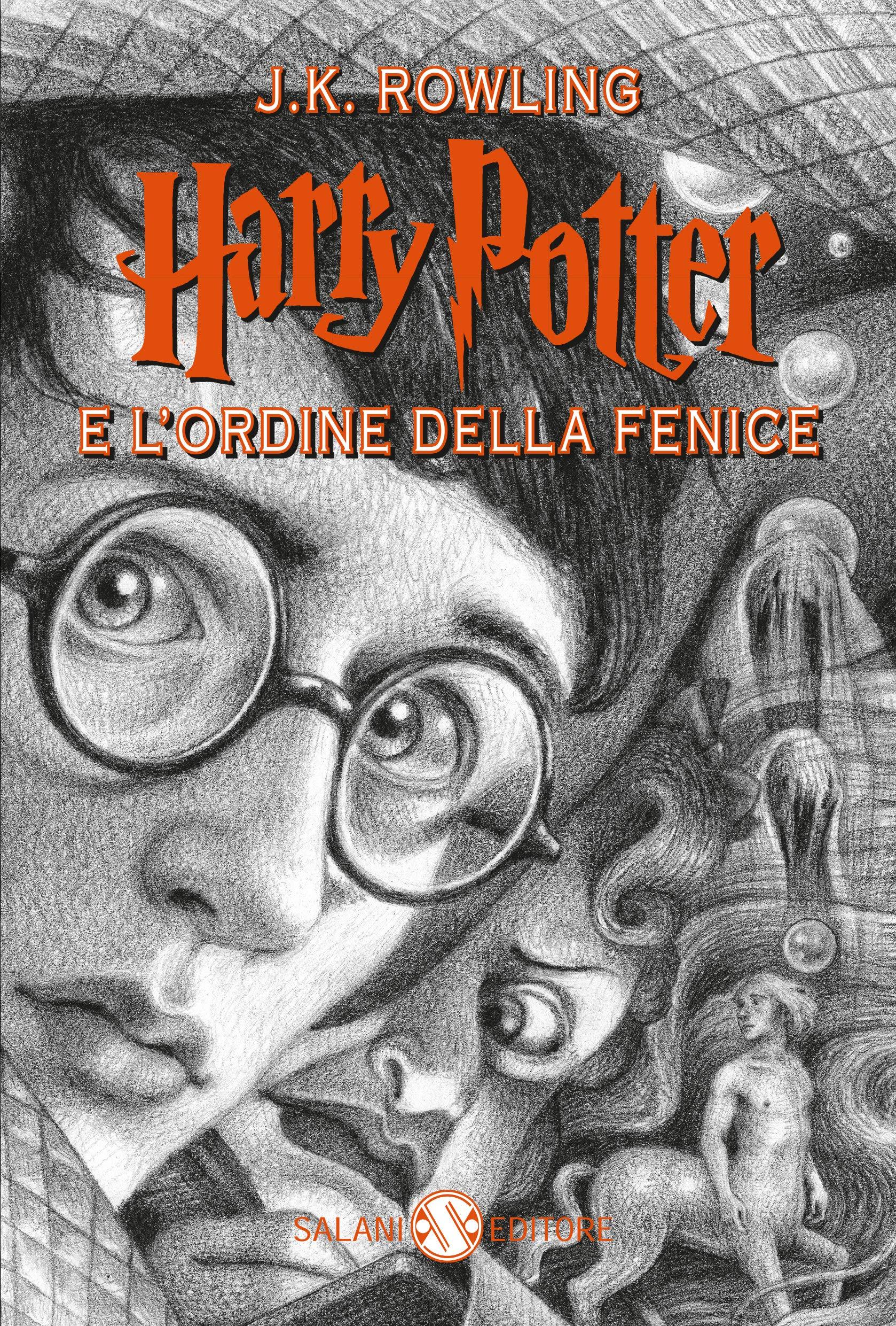 Harry Potter e l'Ordine della Fenice Anniversaio 20 Anni di Magia 2018 Brian Selznick